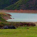 Let's clean-up Drin River that join us in Kukes, Gjakova, Diber, Istog
